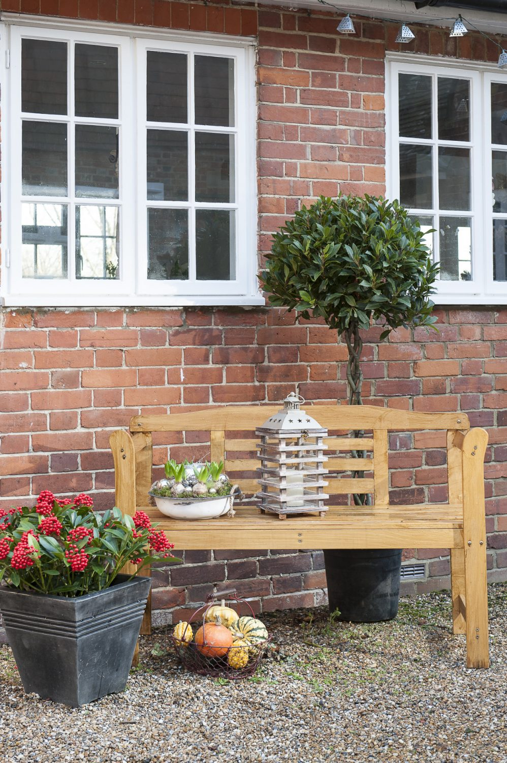 The shared courtyard is a lovely sheltered space in which to relax