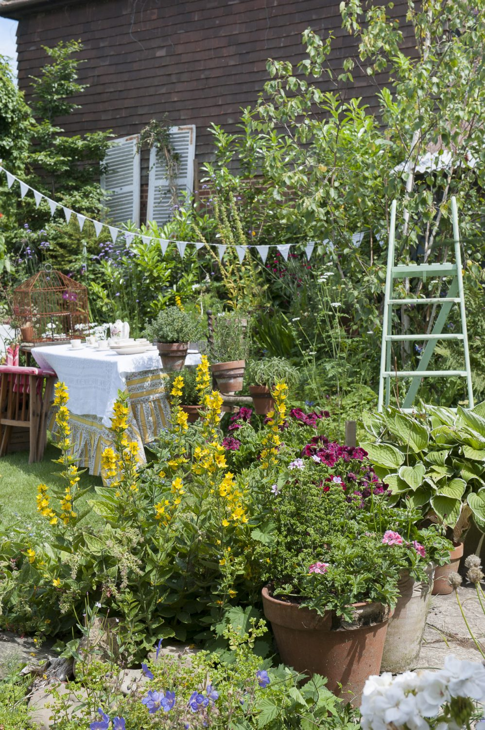 Pippa's eye-catching displays extend into the garden which was once a huge tangle of ivy and foliage. It's now home to vibrant flower beds and swathes of bunting