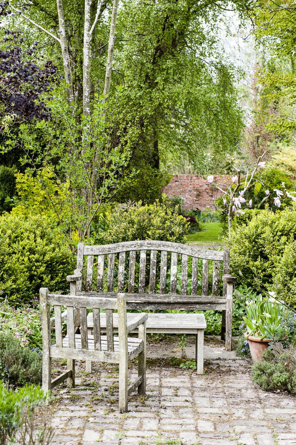 Andrew's garden blurs the line between cultivated and wild
