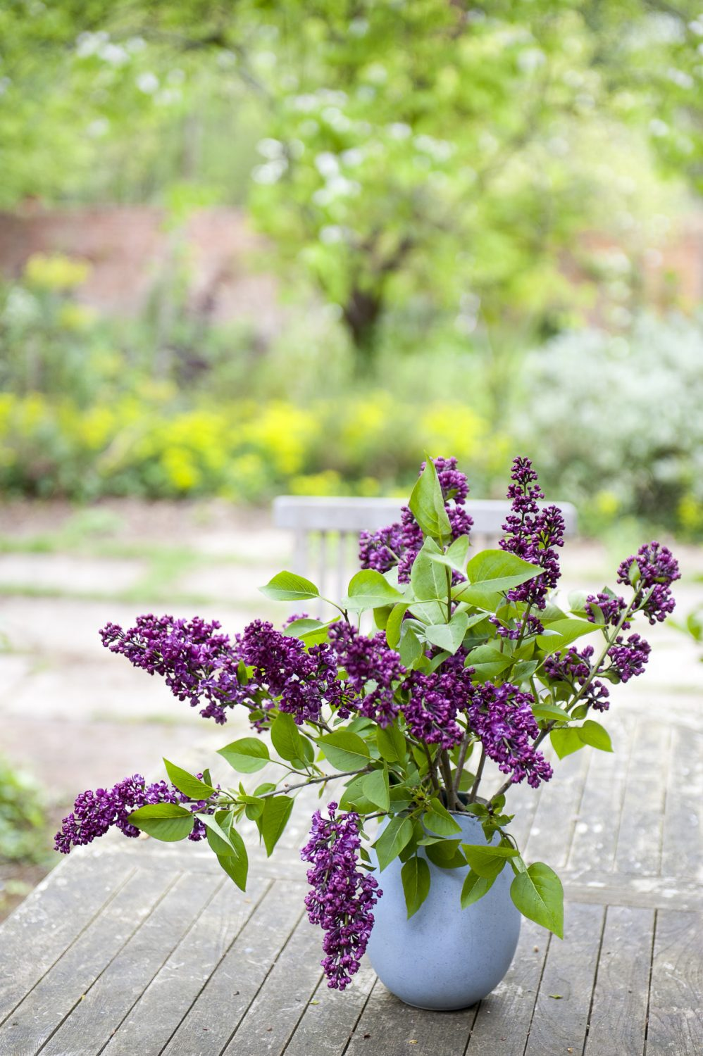 The garden at Horserace has inevitably been hugely influenced by Vanessa's grandmother Vita