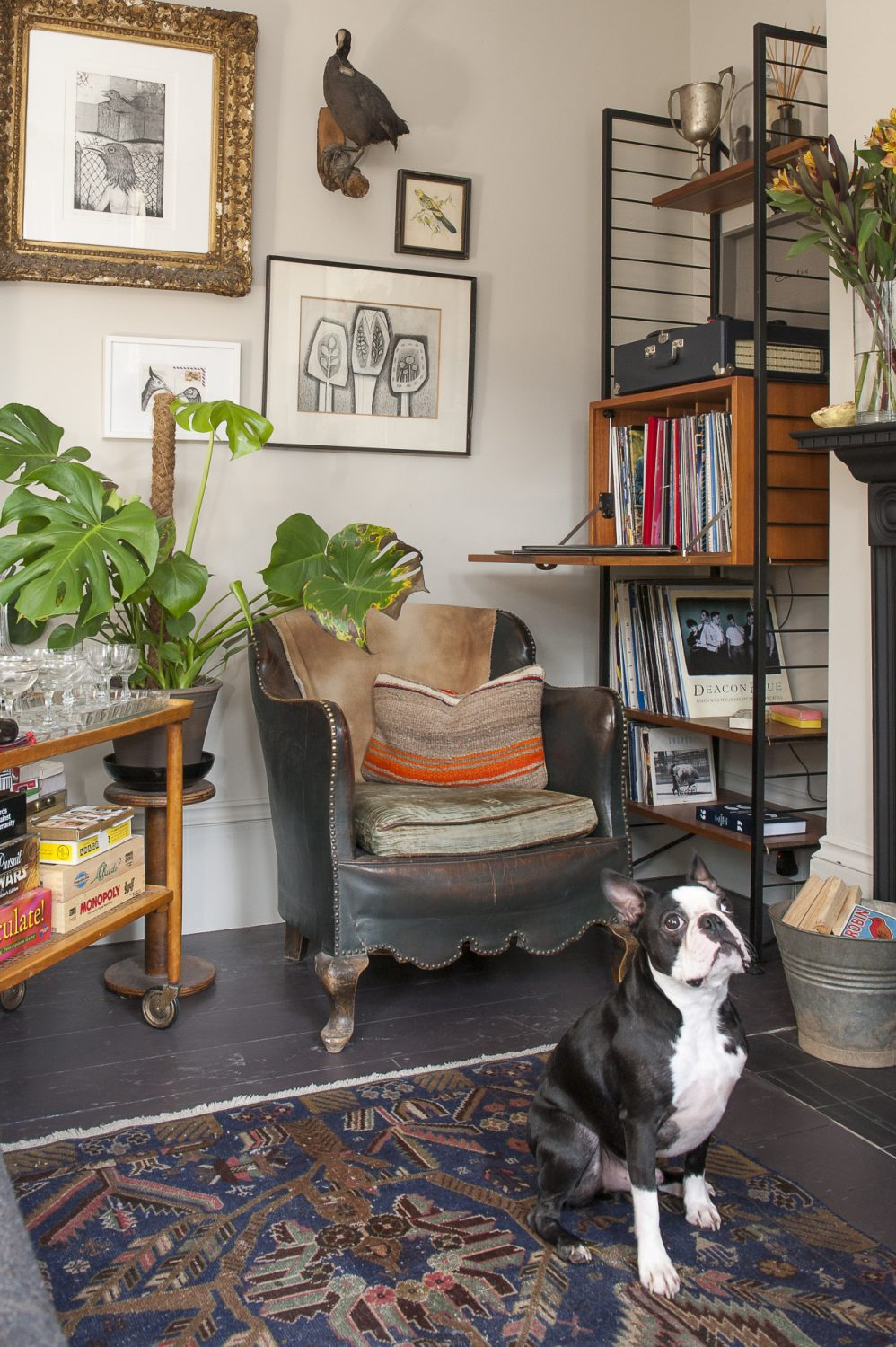 Cooper stands guard in the living room, with floorboards painted in Chocolate by Little Greene. The leather chair is one of a pair from France, found by a lady in St Leonards who has a shop called Sideshow Interiors. Artworks by Russell Loughlan have been carefully placed on the wall
