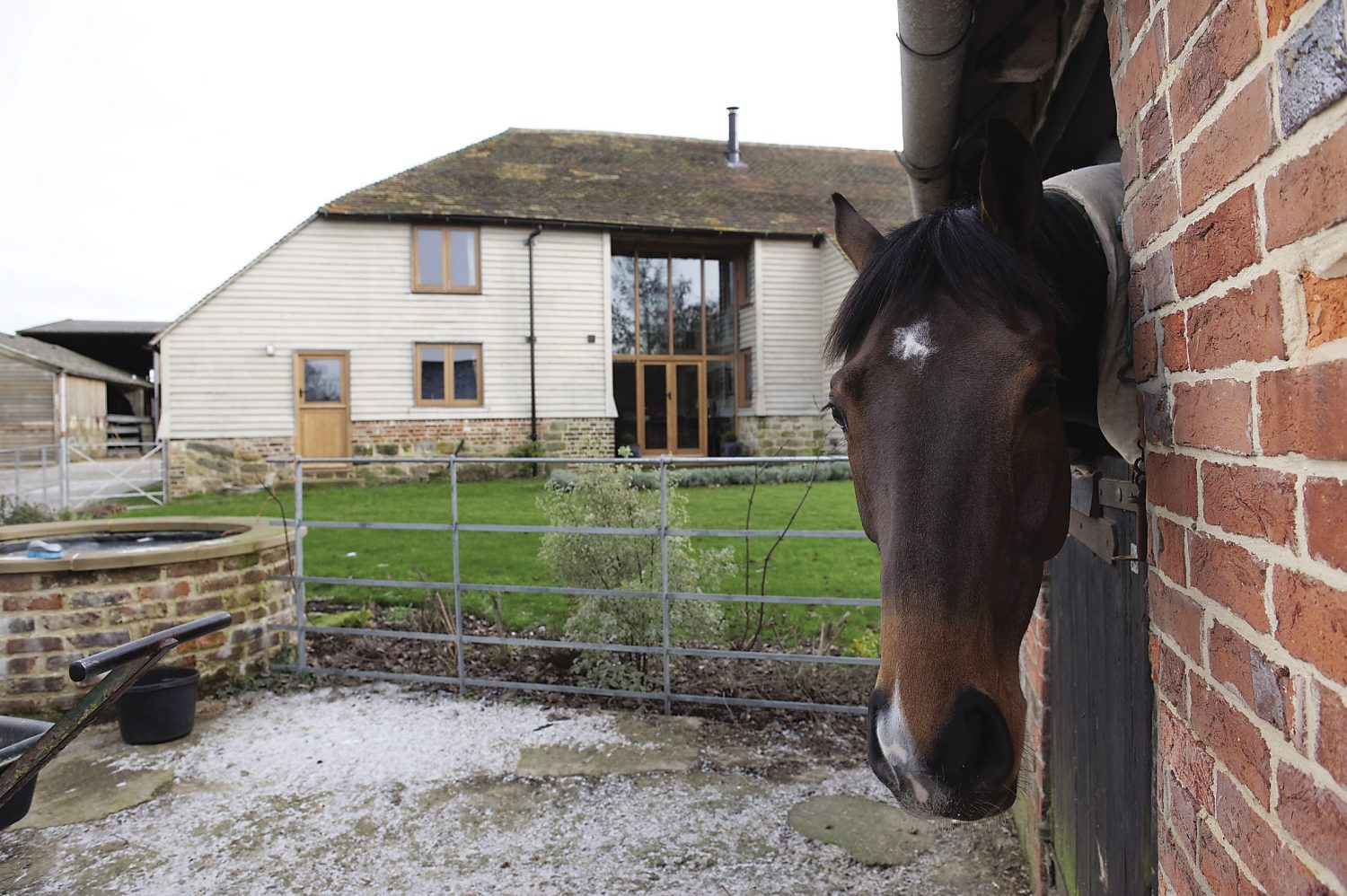 the barn's windows overlook the stables where the family keep their point-to-pointers