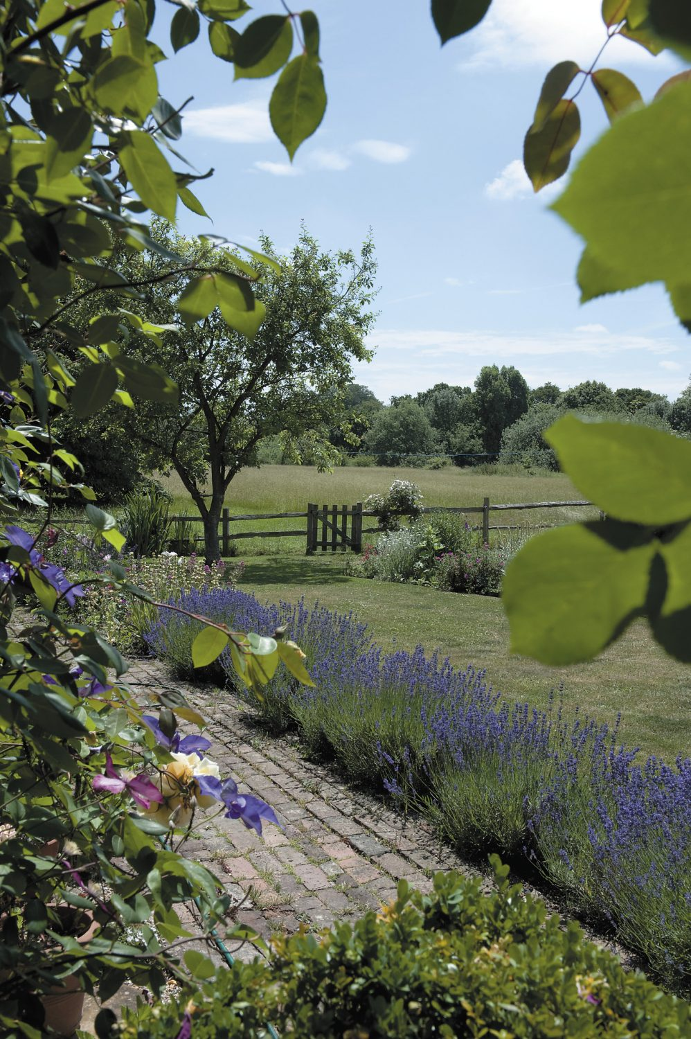 A lavender-edged brick path leads the eye towards the unspoilt meadow beyond