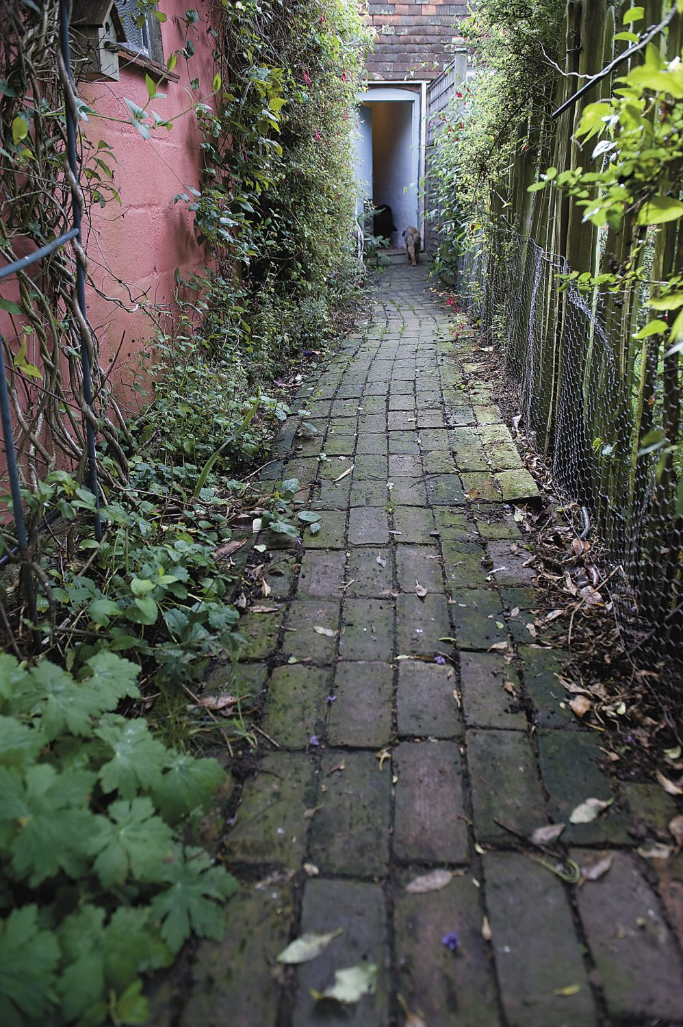 a brick path leads from the house to the garden
