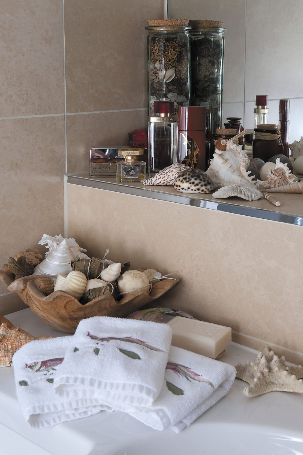 Shells on display in the cloakroom