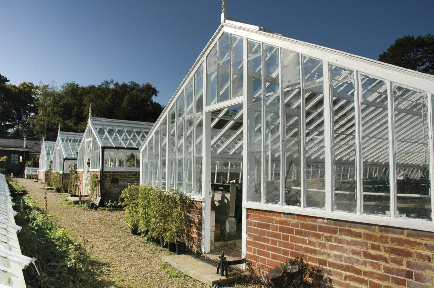 the renovated Victorian green houses at the Walled Nursey, in Hawkhurst