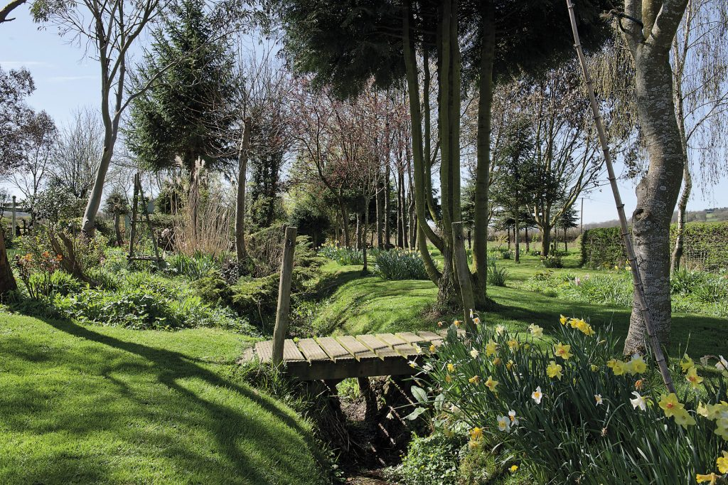 A stream gently meanders through the extensive garden, flanked by glorious daffodils in bloom