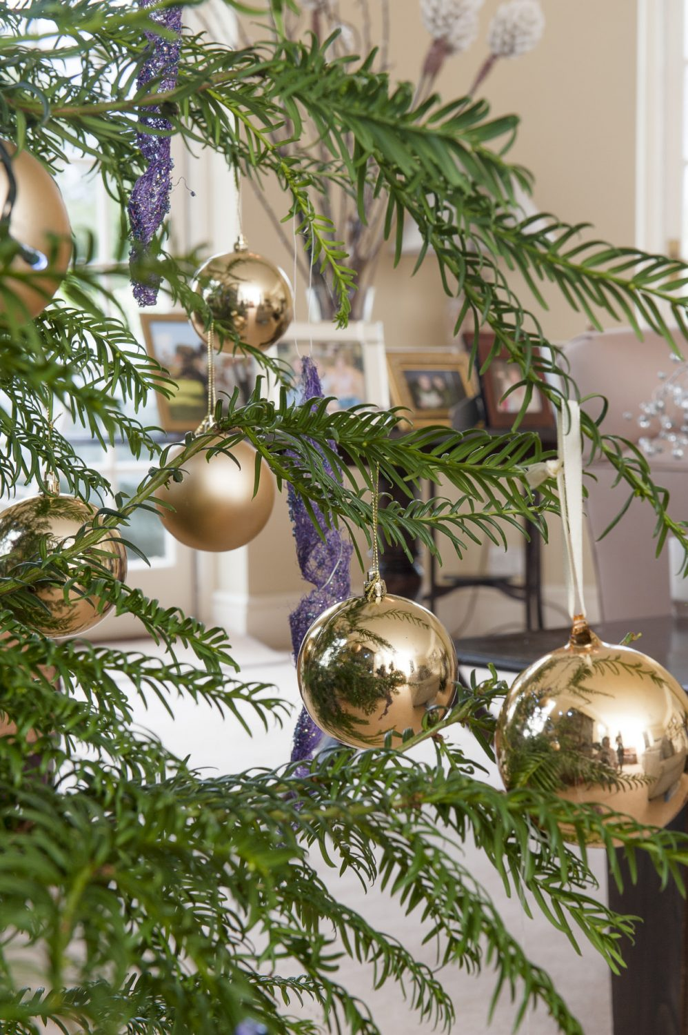 The Christmas tree has been decorated with purple and gold ornaments