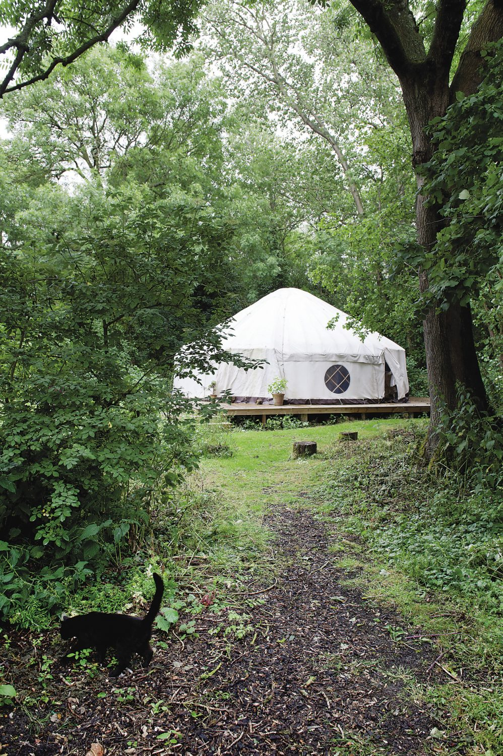A path gently winds its way through the woods to a magnificent yurt. Inside the vast dome, the supports have been cut from hazel trees at Stanmer Park in Brighton. On its wooden floor there are yoga mats laid out in a neat circle ready for the next group