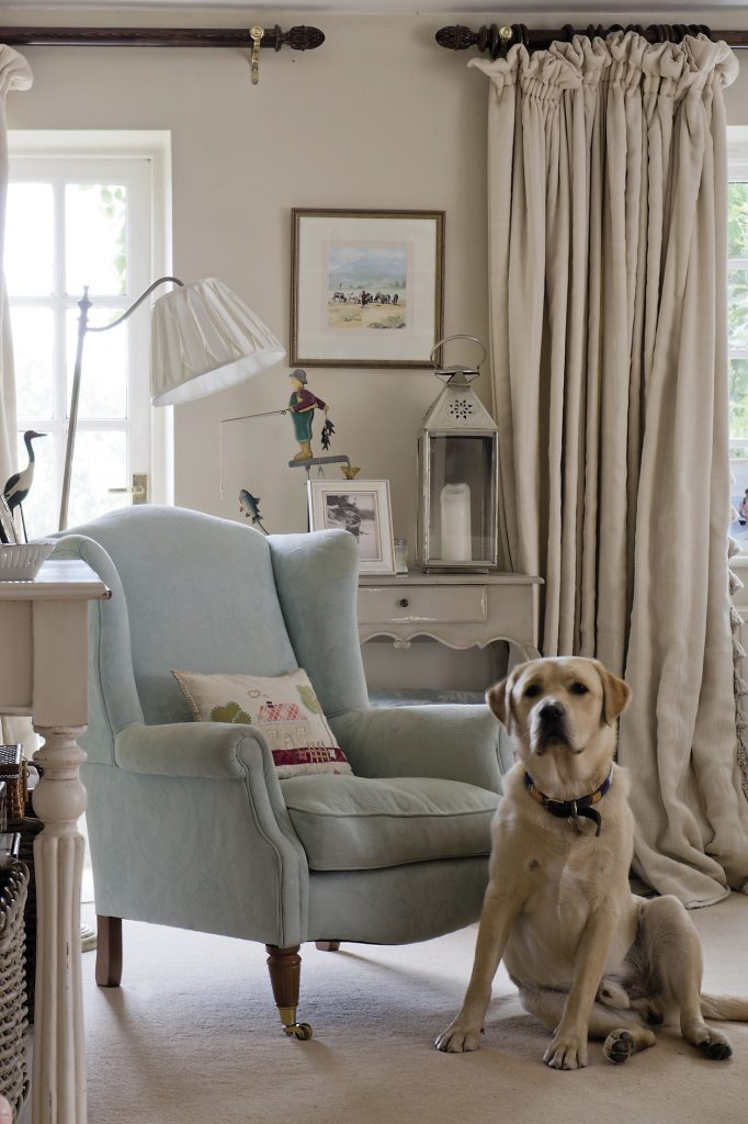 Simba the Labrador relaxes. A silk shaded standard reading lamp overlooks a wingback chair covered in a duck egg blue fabric