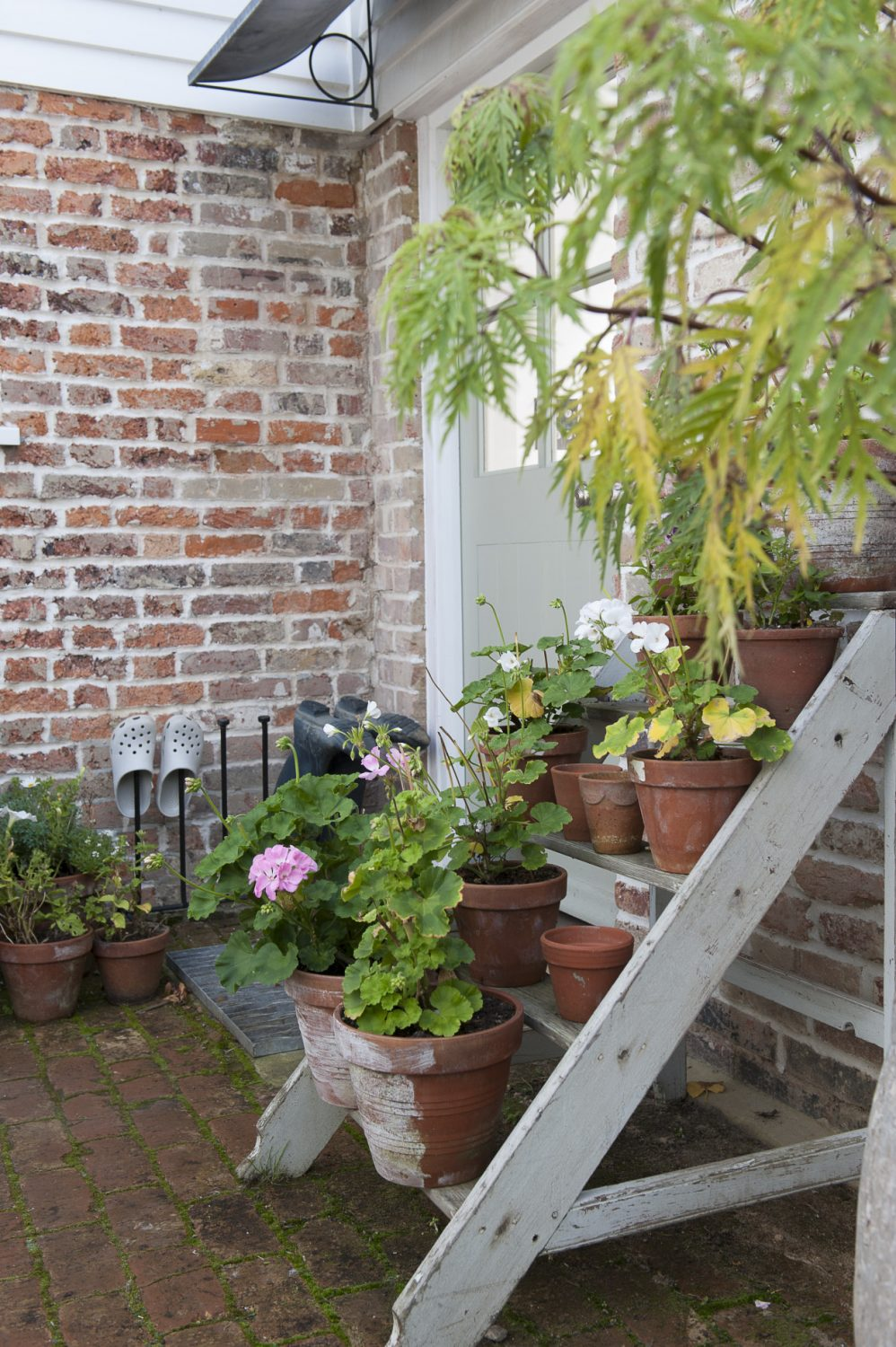 Potted geraniums are clustered along the treads of some reclaimed steps put to use outside the front door