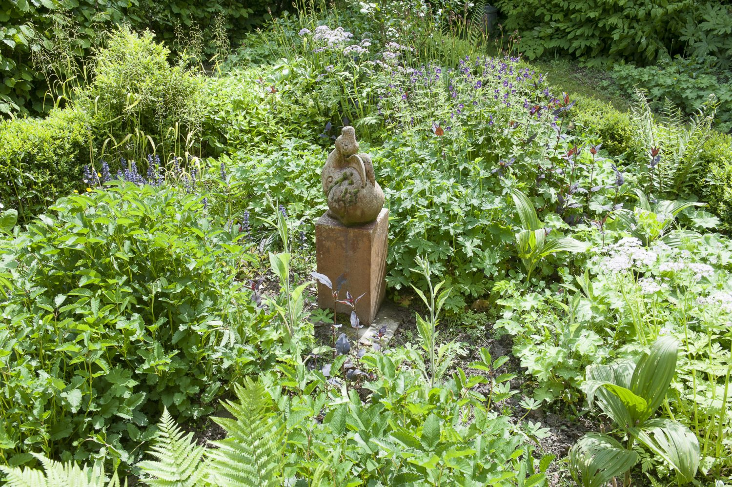 """Wendy is a horticulturist by training """"There was no garden when we came here. It was all just lawn,"""" she says. Looking outside at the full, densely planted beds all around the house, they look so established and as if they've always been in place"""