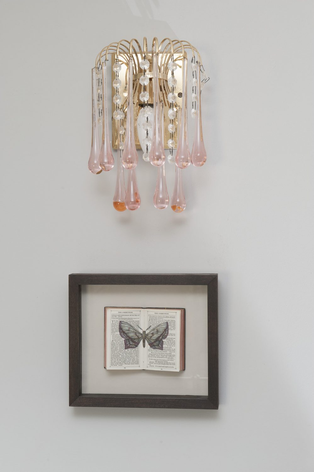 The walls are home to a collection of artist Helen Hunt's lepidopterology studies