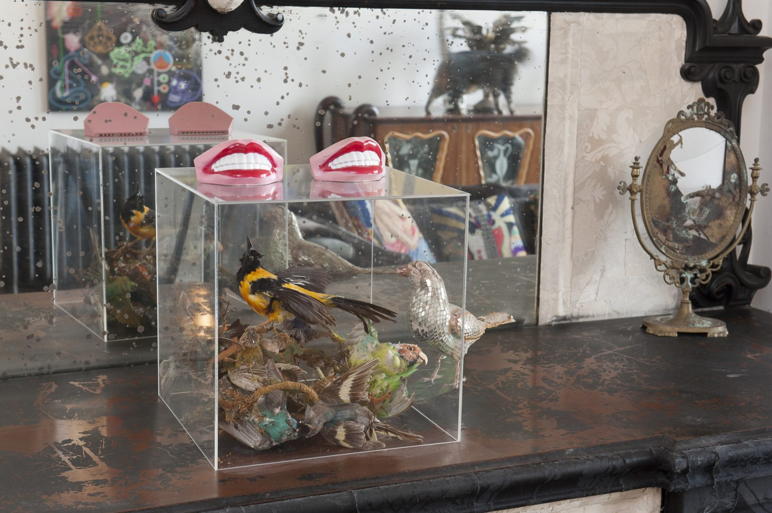 A pair of toothy plastic mouth harmonicas sit atop a perspex box, home to a tangle of taxidermy birds A pair of toothy plastic mouth harmonicas sit atop a perspex box, home to a tangle of taxidermy birds