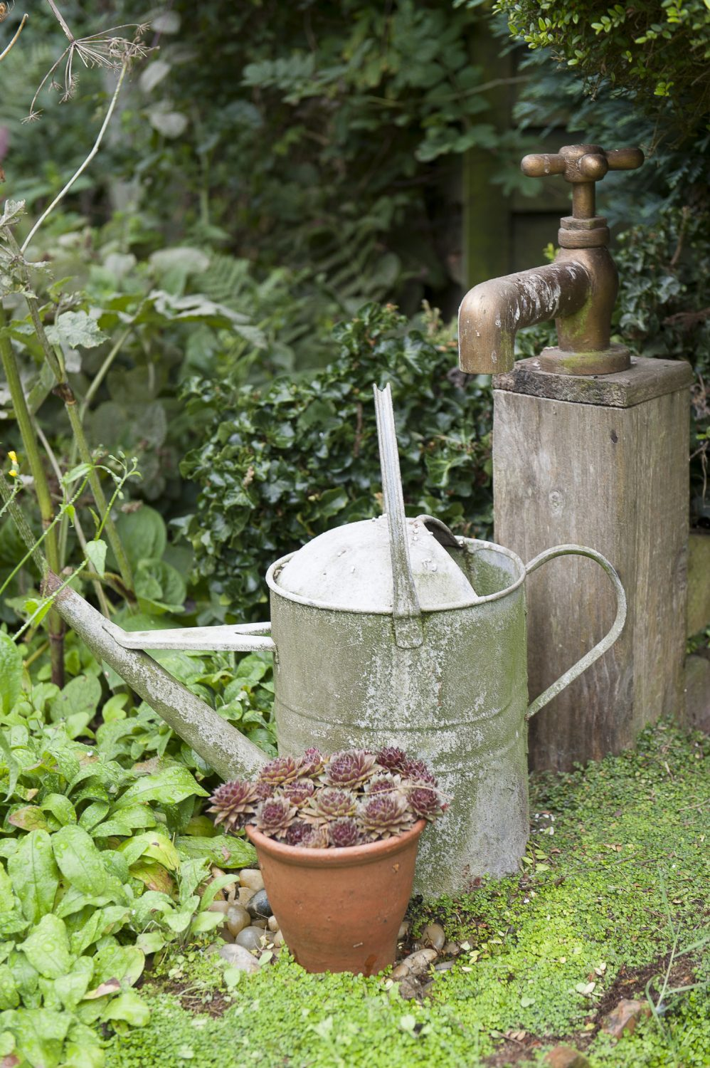 Dave created a water feature from an oversized tap and metal watering can