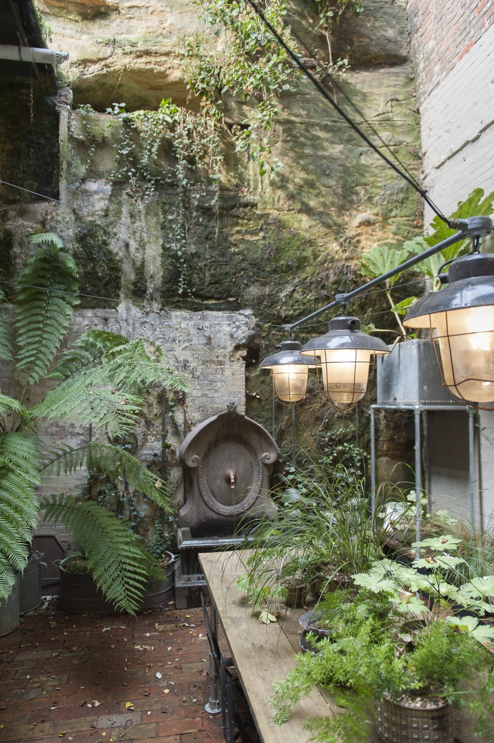 The courtyard garden, backed with Hastings West Hill sandstone, is planted with giant shade-loving ferns