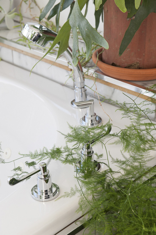 Indoor plants not only make a room look fresher, the plants themselves bring added health benefits