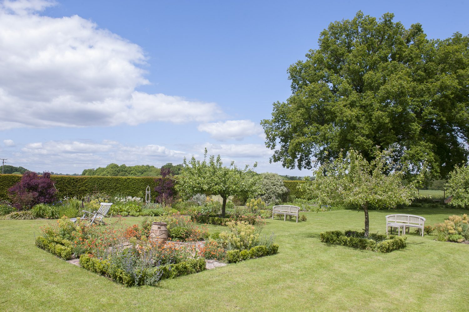 Debbie's love of structure and shape is very evident in the design of the garden. Originally this was just a large expanse of lawn with shrubs around the edge but over the years it has been transformed into a series of inspiring and original garden rooms