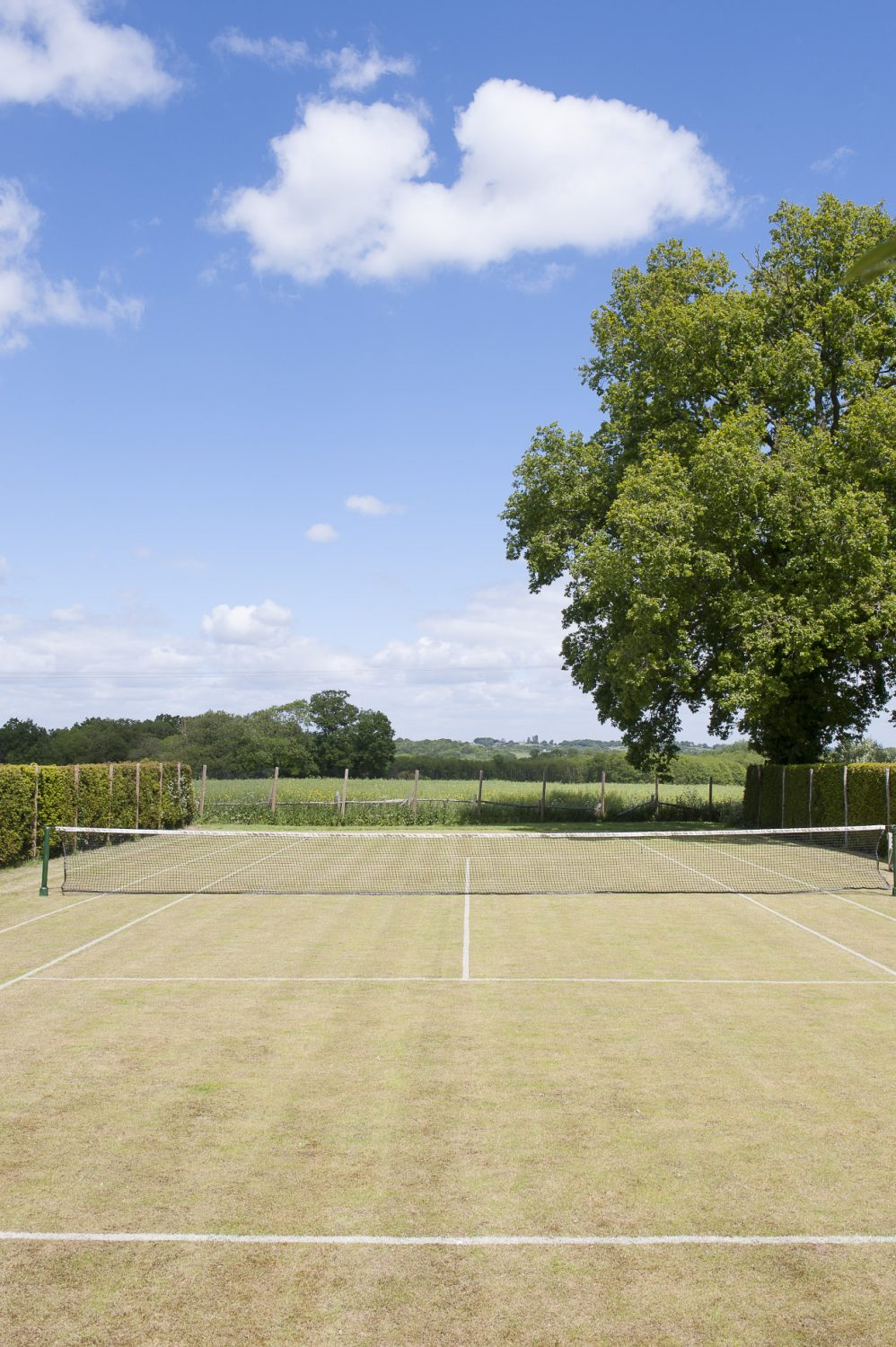 A neatly trimmed hedge conceals the immaculately presented grass tennis court