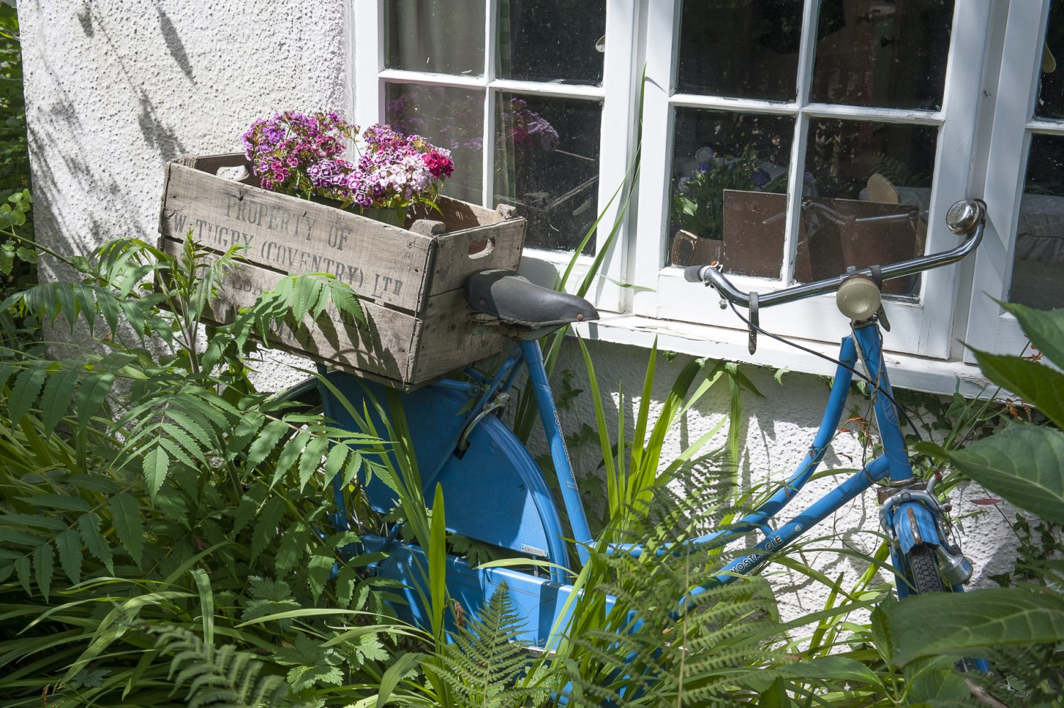 The cottage is concealed from the track that leads down to it by a stylishly 'wild' front garden dotted with vintage finds. Underneath the sitting room window, Pippa has repurposed an old blue bike as a raised planter