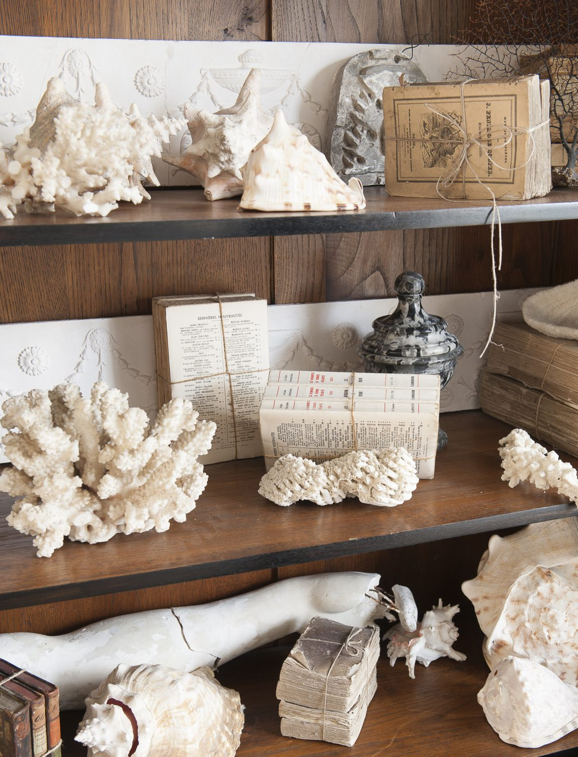 """In the Victorian era people liked to collect shells, and they used to put them in cabinets of curiosity. We put cabinets like that together."""