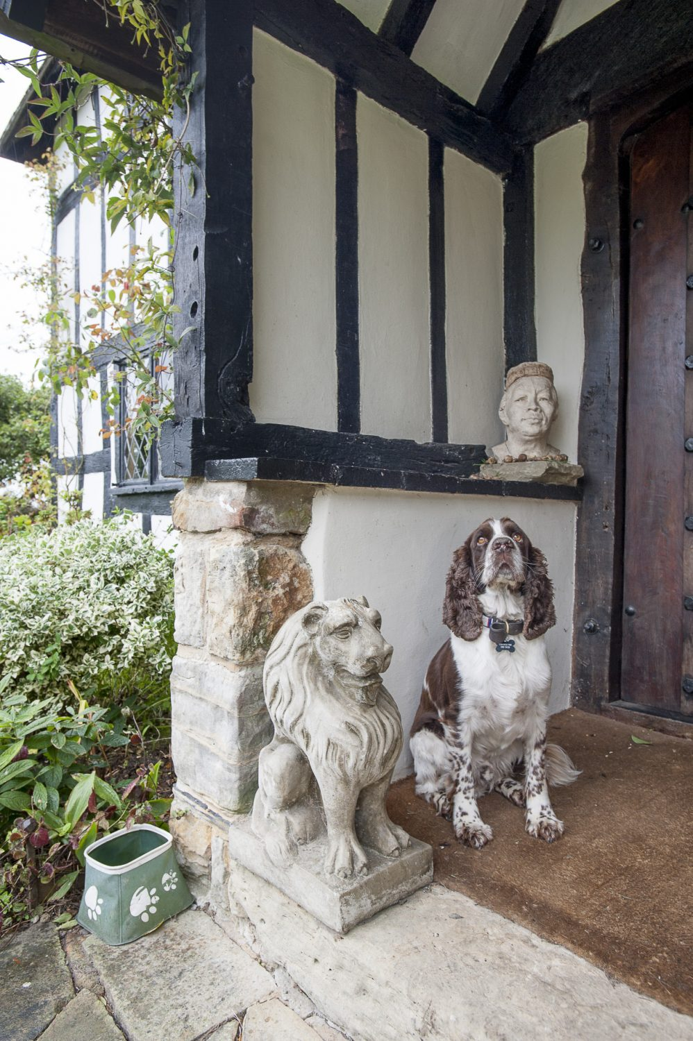 Monty, the family's spaniel stands guard by the front door