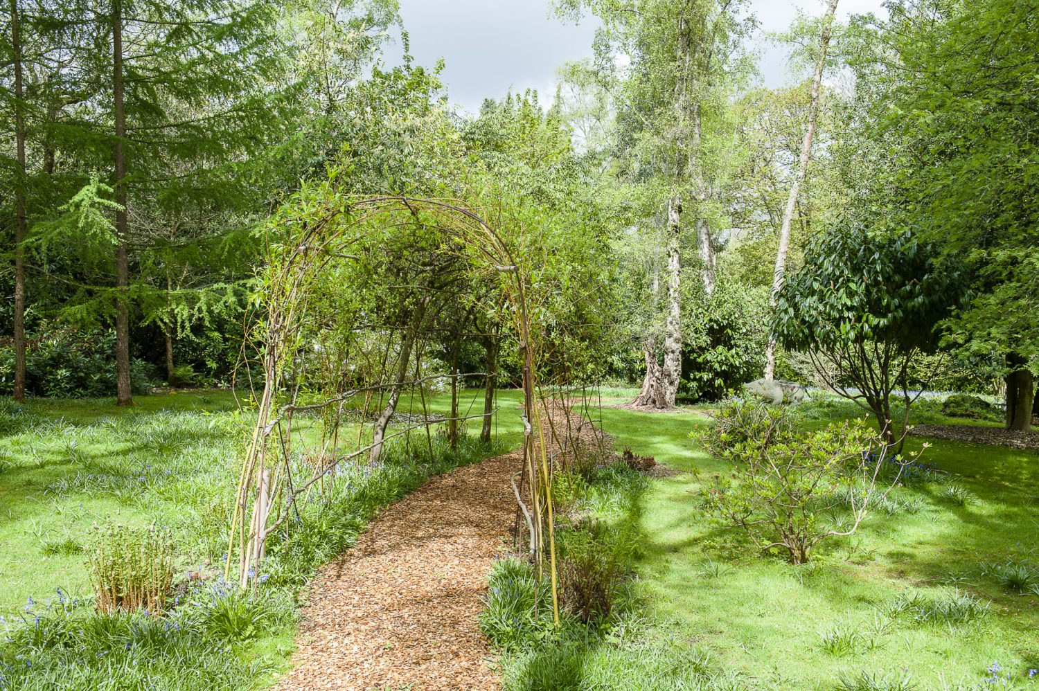 A path meanders through the garden