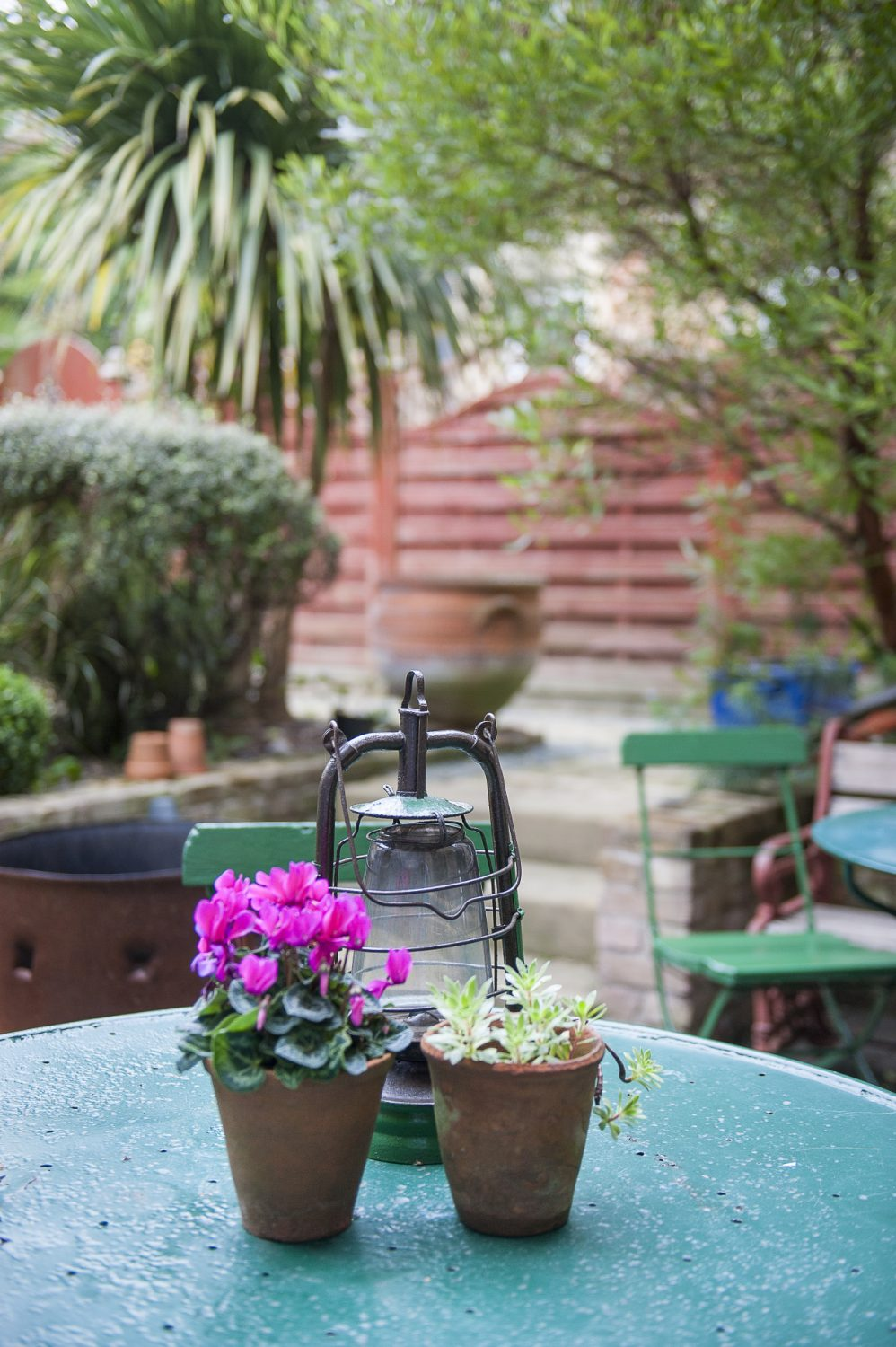 The courtyard garden at the back of the building is filled with potted plants, and is as appealing in winter as it is in summer.