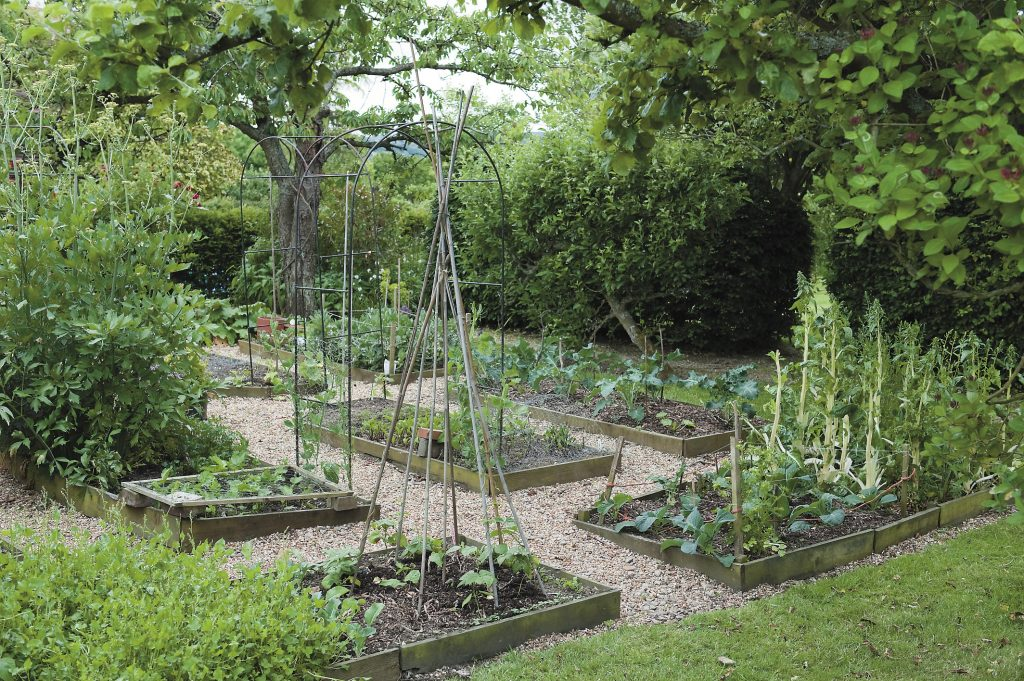 just one of the vegetable patches that are dotted around this very productive garden