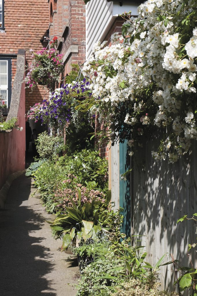 the flower-filled alley is the work of the Mad Hatter Group