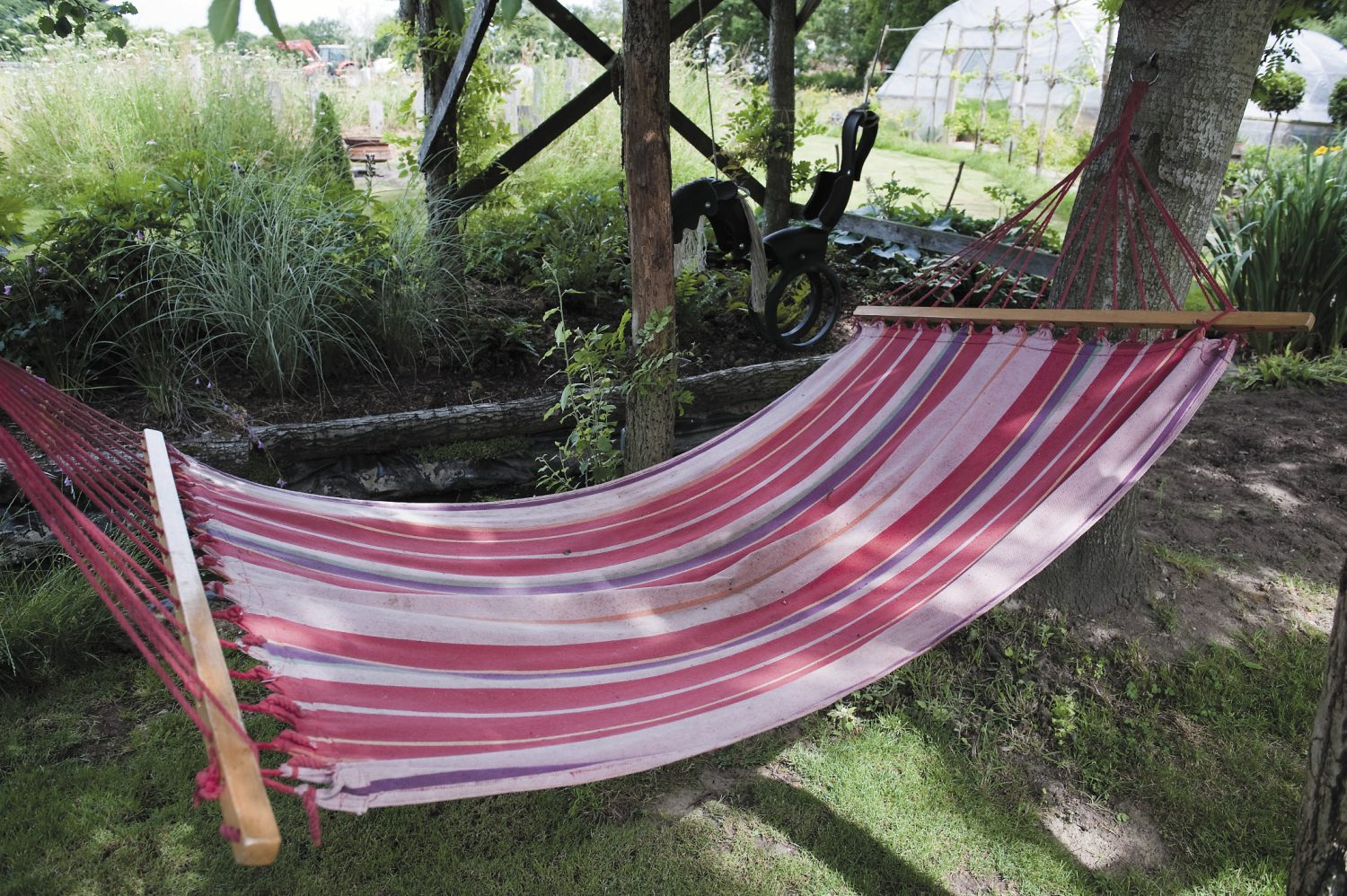 A generously sized hammock is slung under a superb tree-house, the leafy roof of which is provided by the tree itself