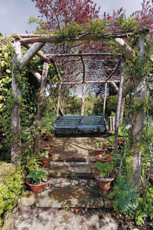 early Spring comes to Edenbridge House gardens