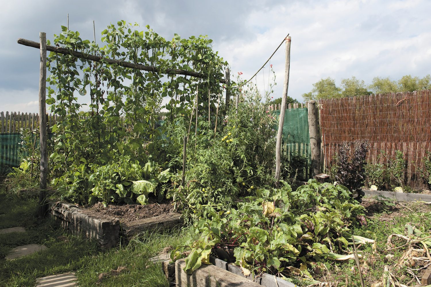 the vegetable garden literally brims with seasonal produce