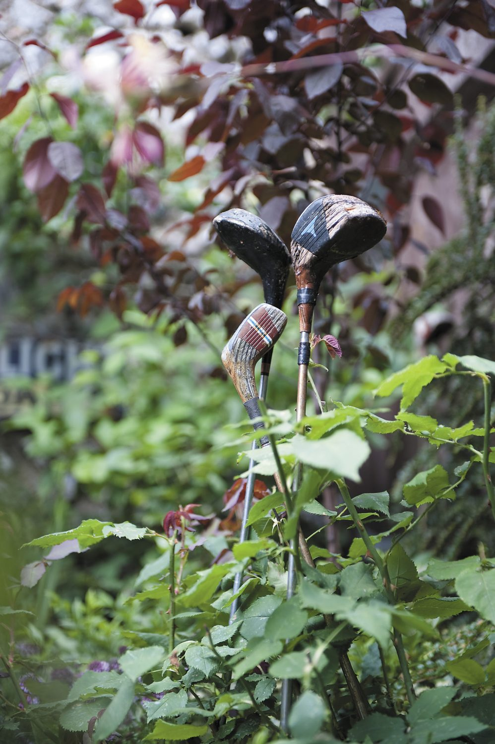 Claire's own garden is an eclectic mix of interesting plants and ornaments made from recycled materials