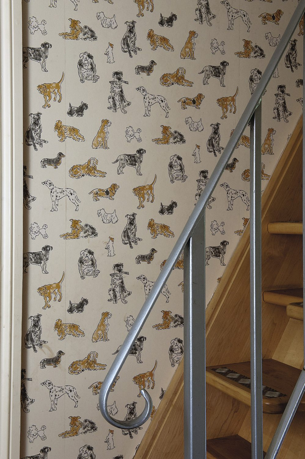 Cappuccino the dog's room, covered in a rather fantastic dog-print wallpaper!