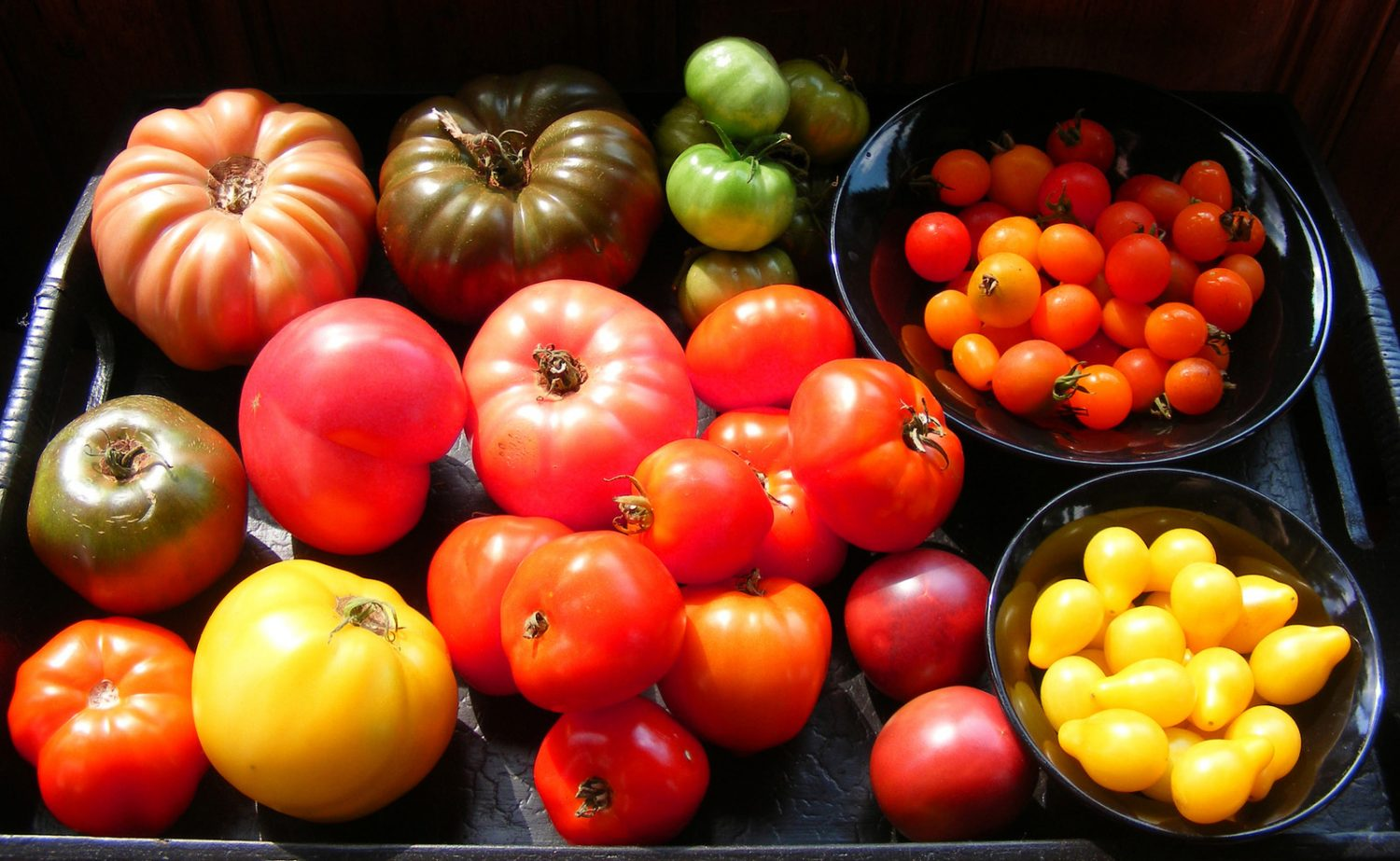 Heirloom varieties are renowned for their flavour, rather than supermarket uniformity