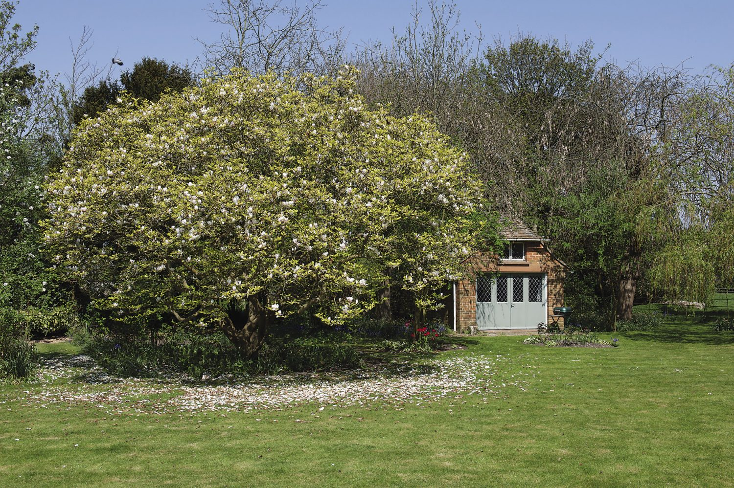 Across the lawn stands a brick summerhouse built in the 1950s