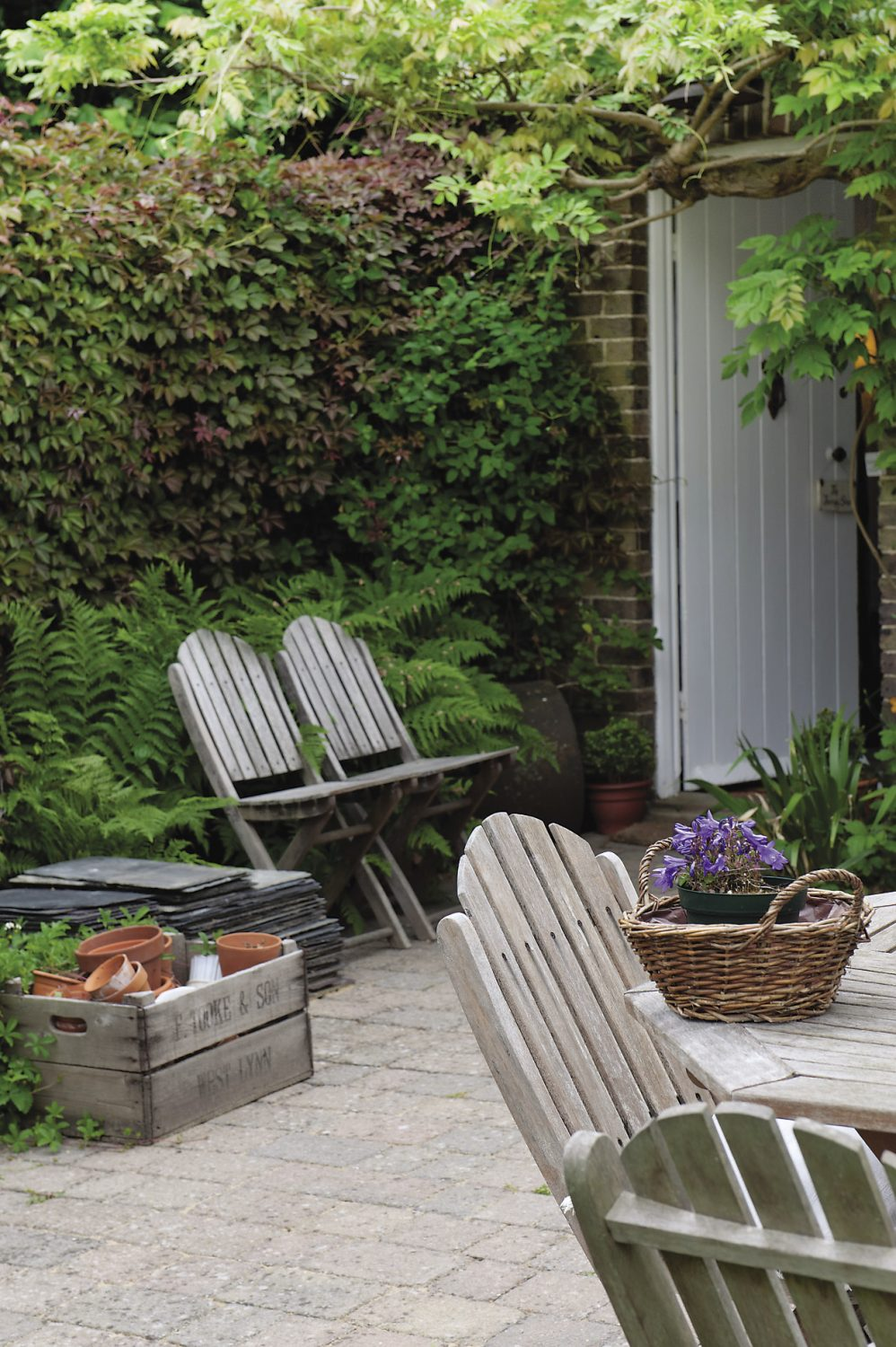 At the very end of the garden is Ann's Therapy Shed, formerly a carpenter's workshop
