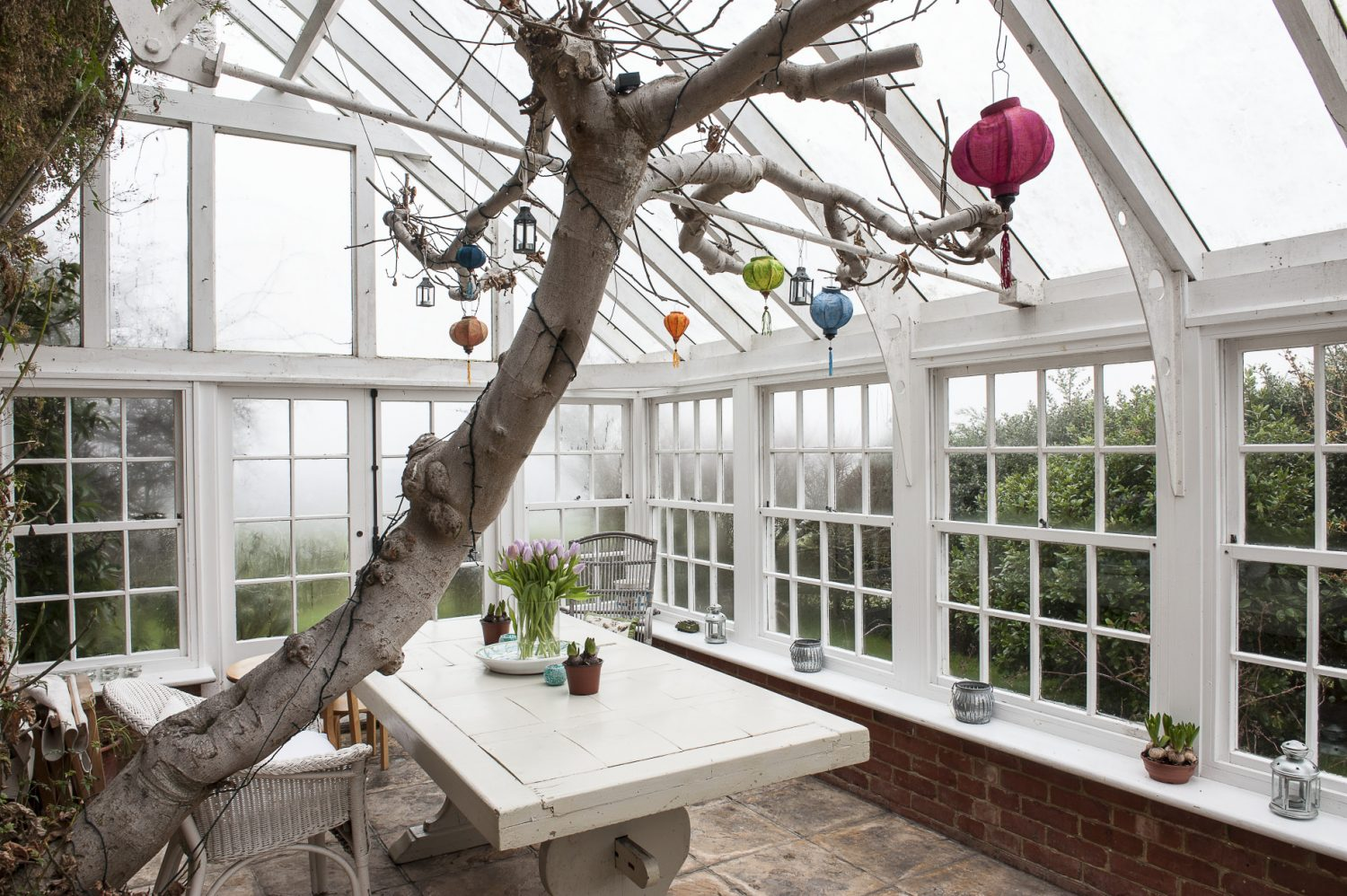 French doors in the kitchen lead out into a truly stunning orangery with flagstone flooring, an ancient fig festooned with Vietnamese paper lanterns growing up the centre and jasmine climbing the walls