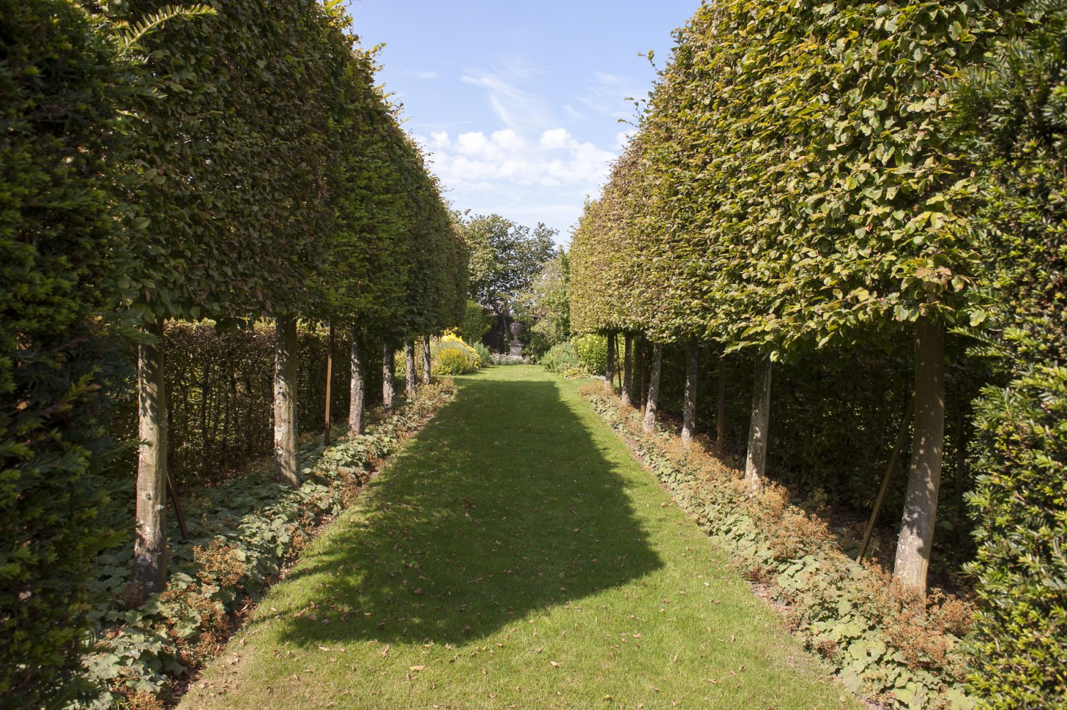 Tall yew hedges lead the way to the white garden which is strongly reminiscent of the larger version at Sissinghurst