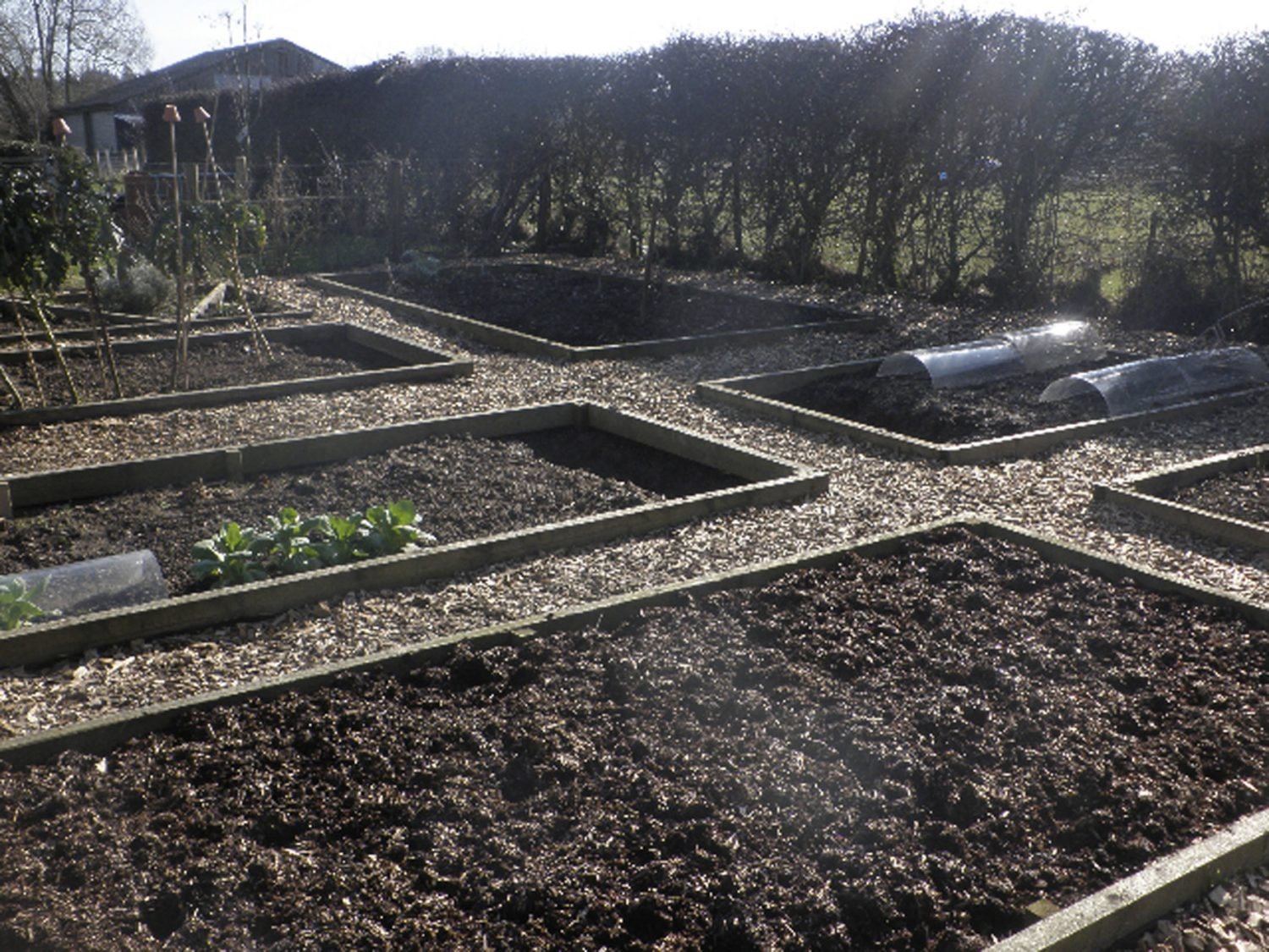 March and April are the main months to start sowing crops directly outside, once the soil starts warming up