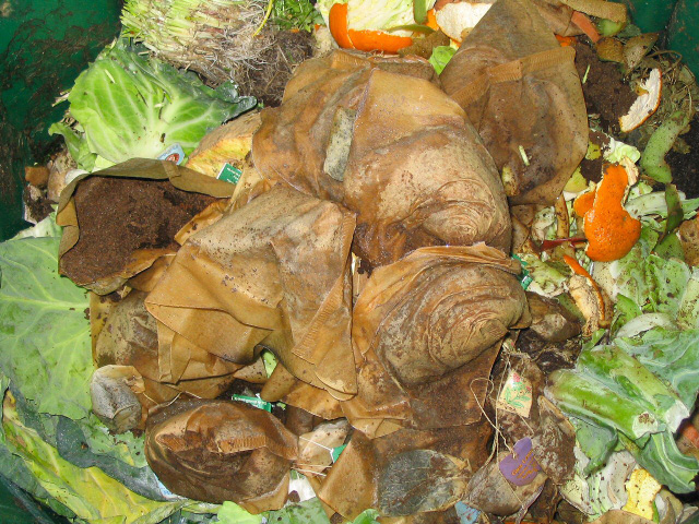 There are two main types of compostable material – nitrogen releasing, or 'green' waste (grass clippings, veg peelings etc) and carbon releasing, or 'brown' waste (shredded stems, paper and card)
