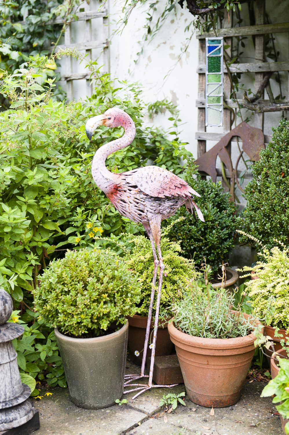 A flamingo keeps an eye on the garden