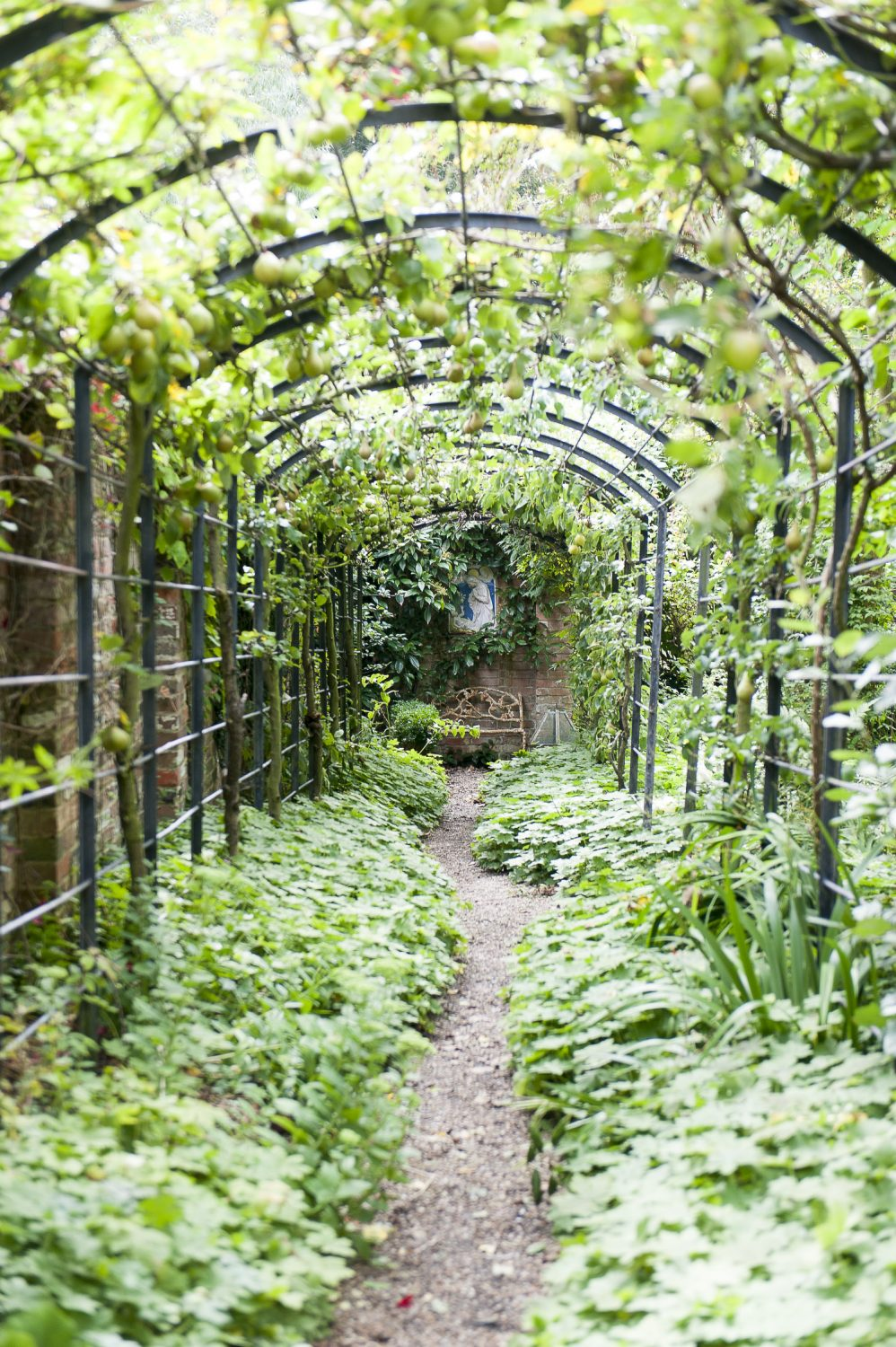 A fruit pergola leads down to the garden