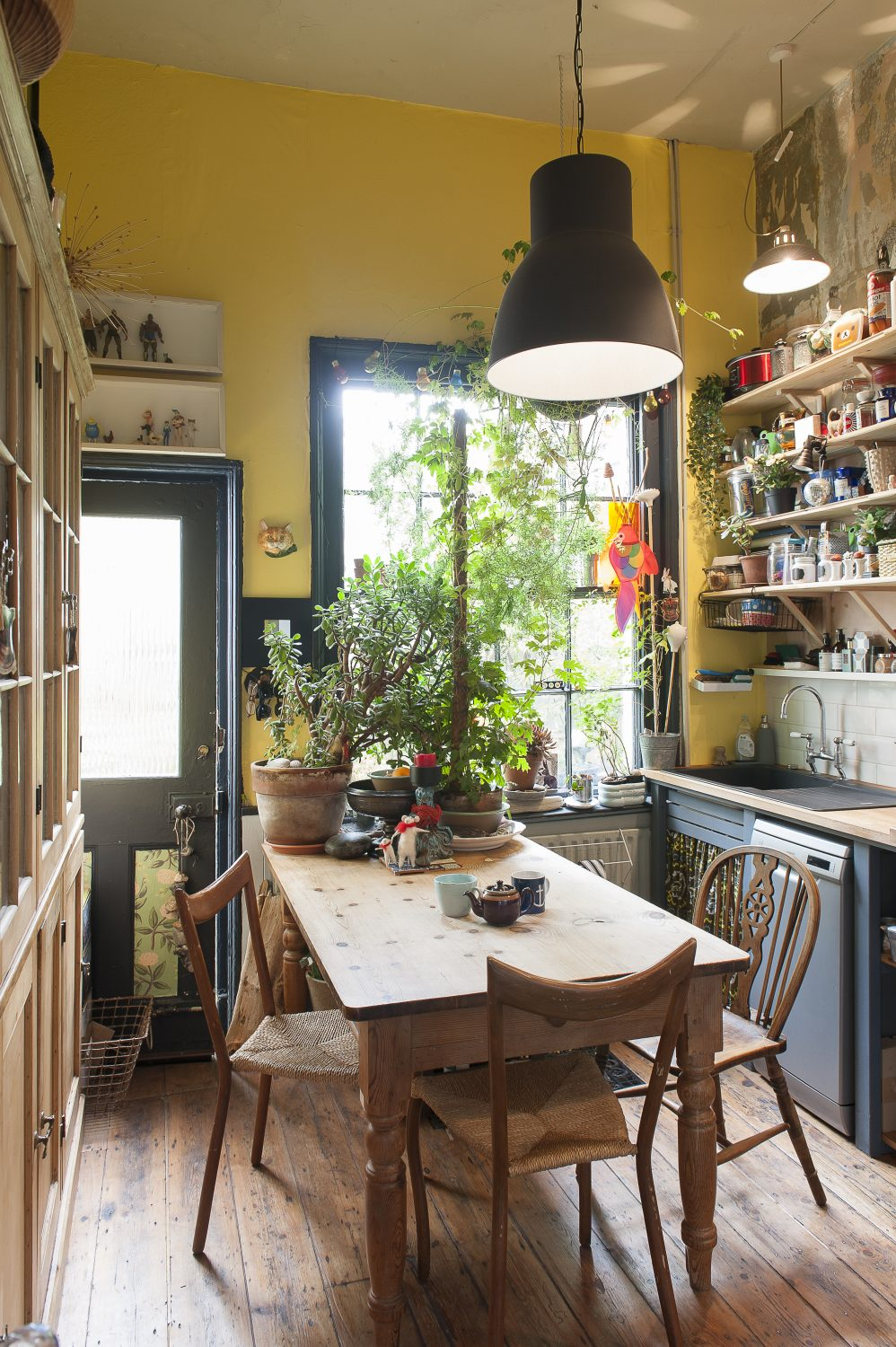 """All kitchens should be yellow,"" declares David)"