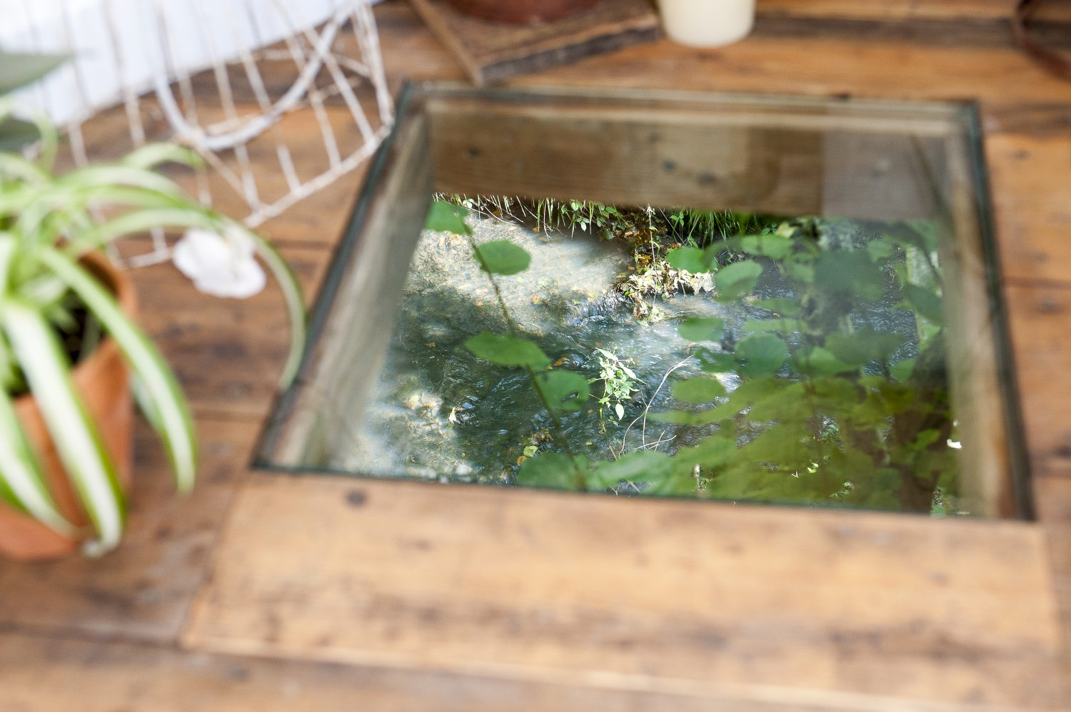 The toughened glass window in the floor of the Mushroom House is two inches thick, so you can stand on it, or lie on the floor and look down to the river below