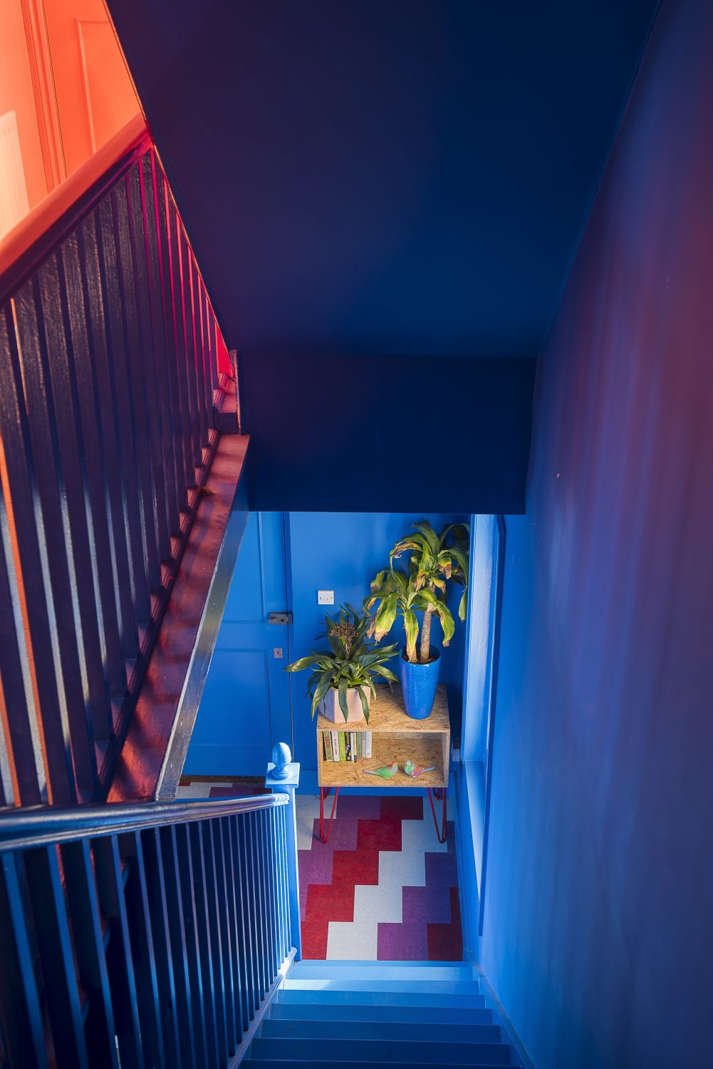 Amy has opted for a bright and brilliant cobalt blue in the hallway