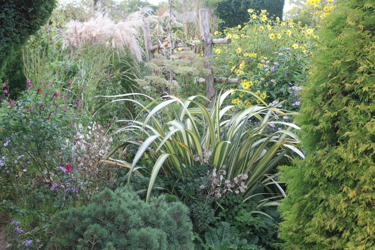 Early autumn at Great Dixter
