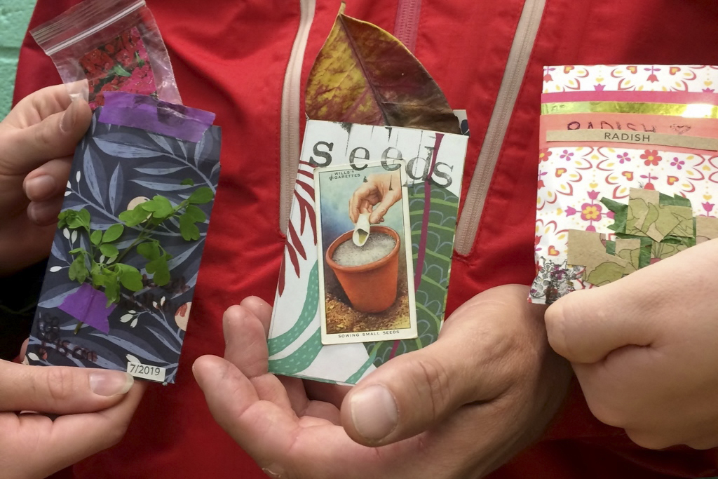 Keen seed swappers and hunters at Brighton's Seedy Sunday, the longest running seed swap in Britain