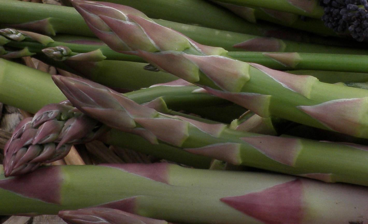 cool veg asparagus
